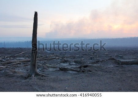 Alaska Highway, Canada - May 6, 2016: Immediate aftermath in the evening of one of many wildfires as a result of a very early dry season along the Alaska Highway.