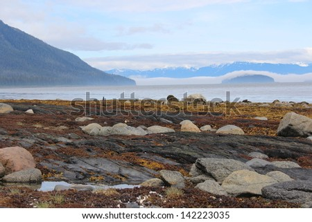 Alaska Island Landscape with Fog - stock photo