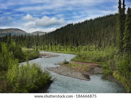 Alaska Landscape In Denali National Park - stock photo