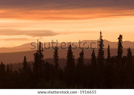 Alaskan landscape in June - stock photo