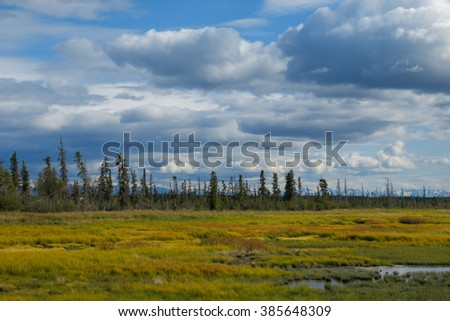Alaskan landscape with tundra and mountains