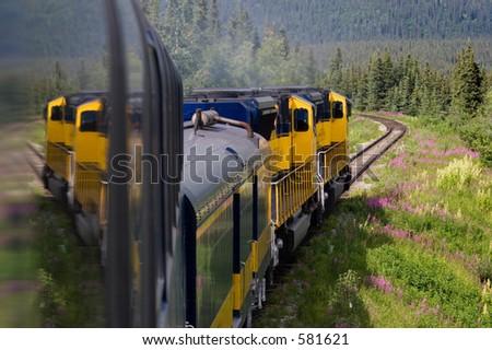 Alaskan Railroad - stock photo