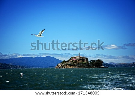 Alcatraz Island seen from a boat with a seagull flying near the boat. - stock photo