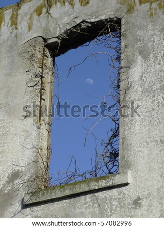 Alcatraz window surrounded by dead vines with blue sky and moon as background. - stock photo
