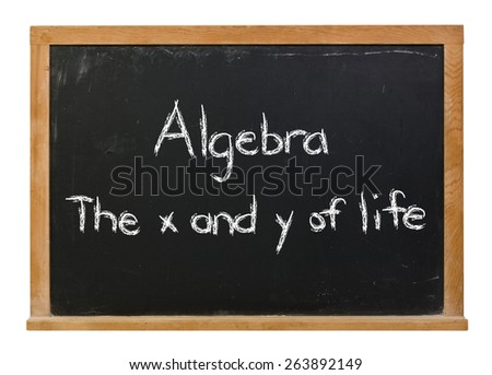 Algebra the x and y of life written in white chalk on a black chalkboard isolated on white - stock photo