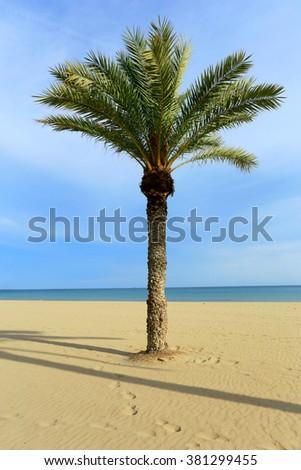 Alicante beach blue sky sunny day - stock photo