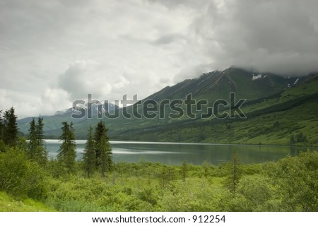 All green around Kenai peninsula lake in Alaska