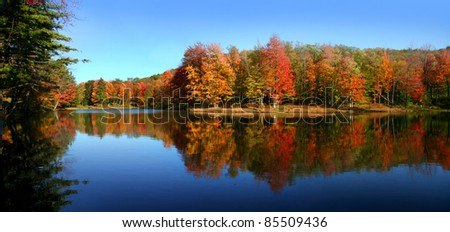 Allegheny state park - stock photo