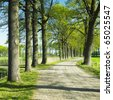 alley, County Netherlands - stock photo