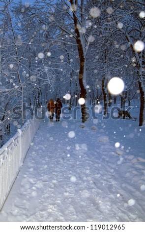 Alley in a park covered with snow and couple in walking in winter park - stock photo