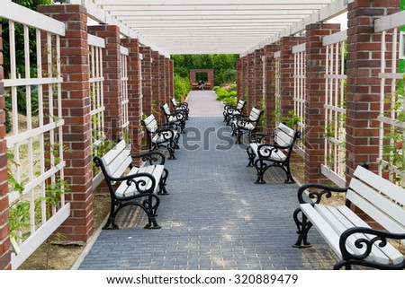 Alley in a park with benches. Perspective view. - stock photo