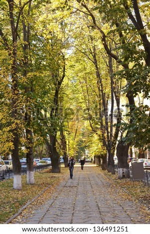Alley in autumn city - stock photo