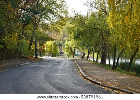 Alley in beautiful autumn park