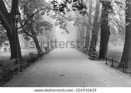 Alley in Cracow's park in a fog, Poland - stock photo