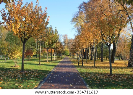 Alley in the yellow bright autumn park - stock photo