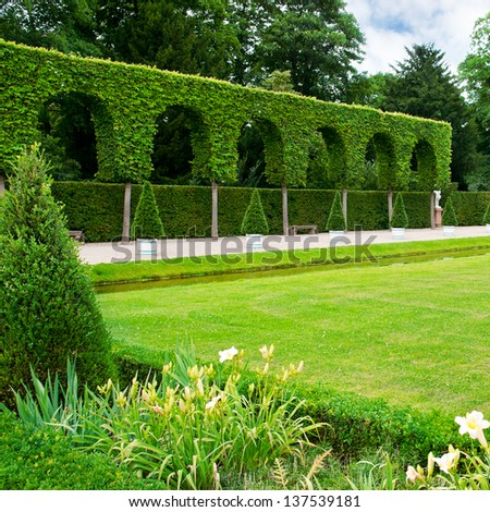 Alley lawn and hedge in a summer park - stock photo