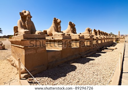 Alley of ram-headed sphinxes in front of Karnak temple,Egypt - stock photo
