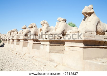 Alley of the ram-headed sphinges in front of Karnak Temple at Luxor, Egypt. - stock photo
