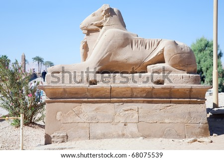 Alley of the ram-headed sphinges in front of Karnak Temple at Luxor, Egypt - stock photo