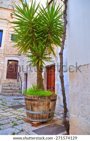 Alleyway. Rutigliano. Puglia. Italy. - stock photo