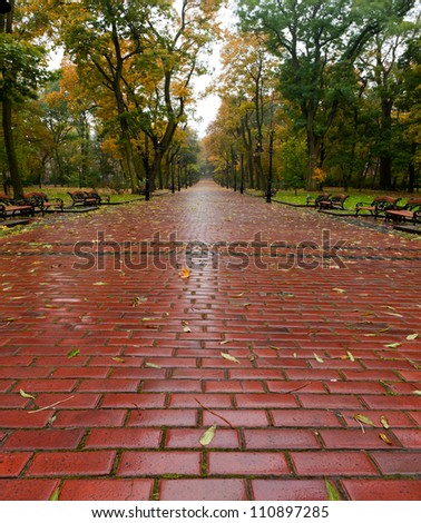 alleyway with paved road to autumn park. The Lvov park - stock photo