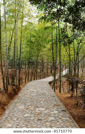 alleyway with paved road to Yellow mountain (Huangshan) - stock photo