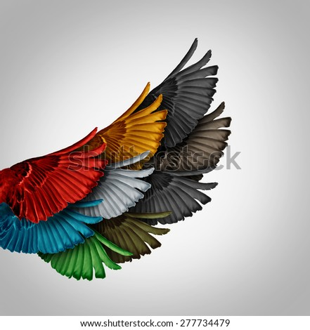 Alliance concept and working together business idea as a diverse group of bird wings coming as one to form a giant powerful wing as a synergy metaphor for cooperation success and employee support. - stock photo