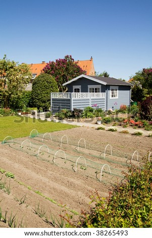 allotment with garden and soil with plants and vegetable. small blue hut with lawn and shrubs around - stock photo