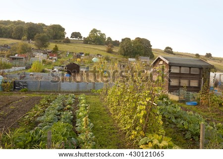 Allotments. The allotment culture of Europe dates back many centuries. Small parcels of land were allowed to each villager to grow food for their family and the tradition still continues today.