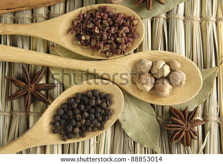 Allspice, peppercorns and white and white peppercorns, nutmeg seed on wooden spoon - stock photo