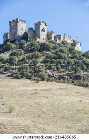 Almodovar del Rio Castle, arab fortress built in 740 on an old building in early times near Cordoba, Andalusia, Spain.