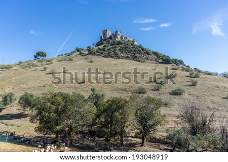 Almodovar del Rio Castle, Spain - stock photo