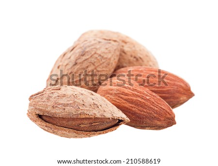 Almond nut seed closeup isolated on white