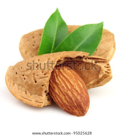 Almonds in closeup with leaves - stock photo