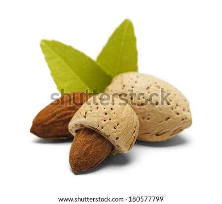 Almonds with Open, Half Open and Closed with Green Leaves Isolated on White Background. - stock photo