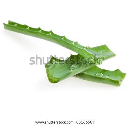 Aloe fresh leaf  isolated on white - stock photo