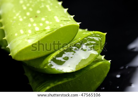Aloe leaf with juice droplet with reflection - stock photo