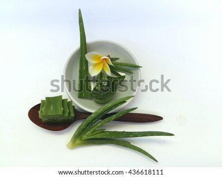 Aloe vera for spa and beauty with wooden spoon on white background