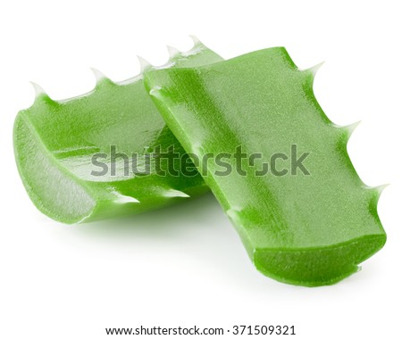 aloe vera leaves isolated on white Clipping Path�¢?�¨  - stock photo