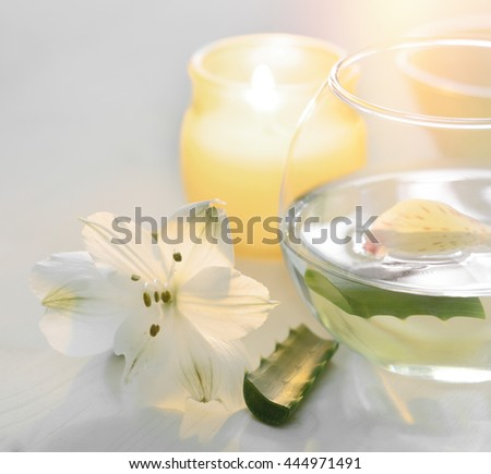 Aloe vera water with slices  use in spa and wellness for skin care and in herbal medicine.