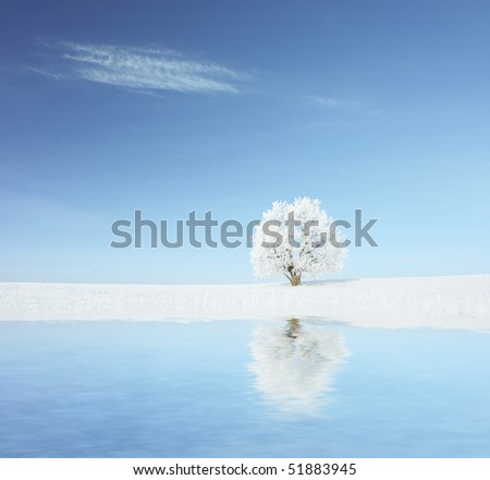 Alone frozen tree with reflection - stock photo