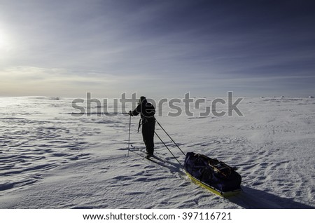Alone in the arctic - stock photo