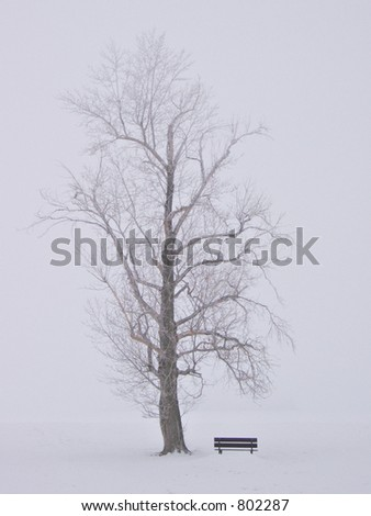 Alone in Winter