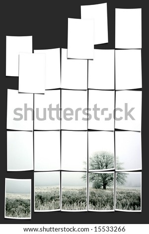 alone tree. collage - stock photo