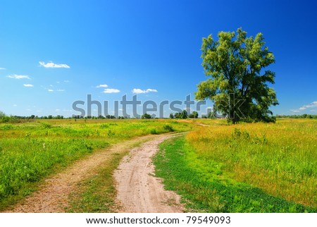 alone tree on sky background and dirt road in lea - stock photo