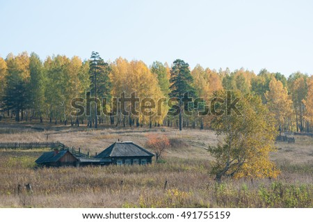 Alone wooden countryside house standing by the autumn forest, South Ural, Russia