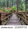 Along forest trail is a wooden foot bridge - stock photo