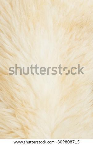 Alpaca fleece background - stock photo
