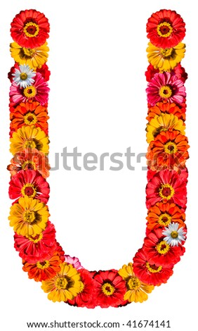 Alphabet collection made from different flowers- U - stock photo