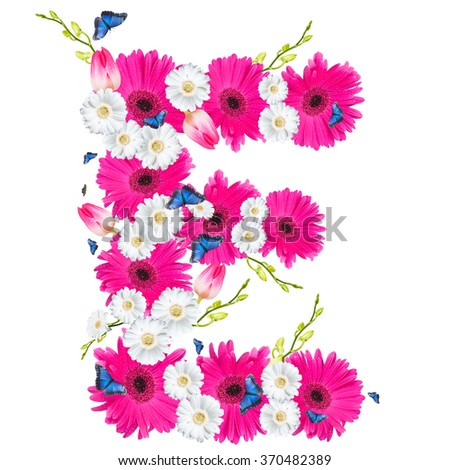 alphabet flower E, Gerber, tulips and butterfly isolated on white background.  - stock photo